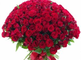 Bouquet Of 151ver Red Roses 960x1120